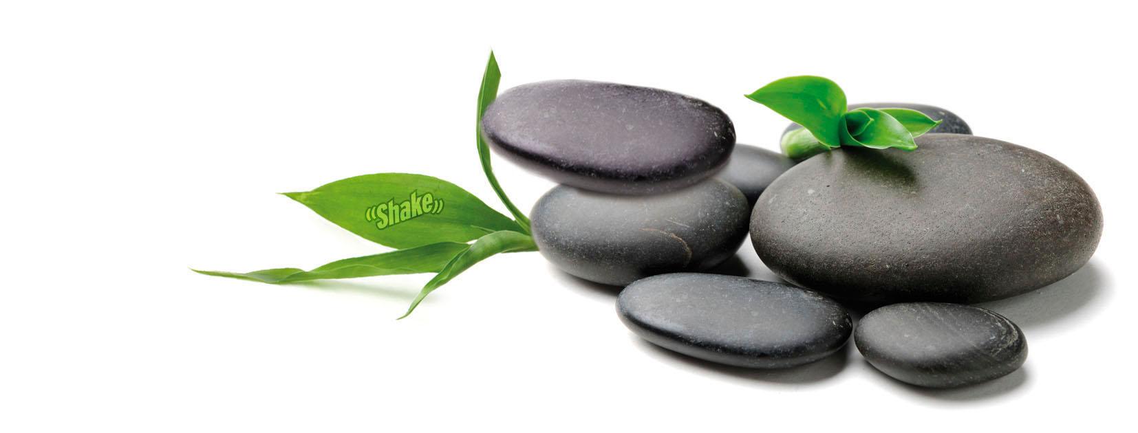 Zen for Salon toilettage zen attitude